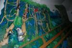 Tschungel/Regenwald/ Jungle /Rainfores